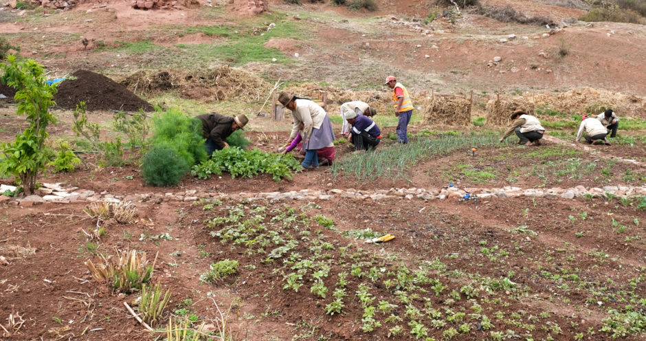 Local farming community helping at MIL