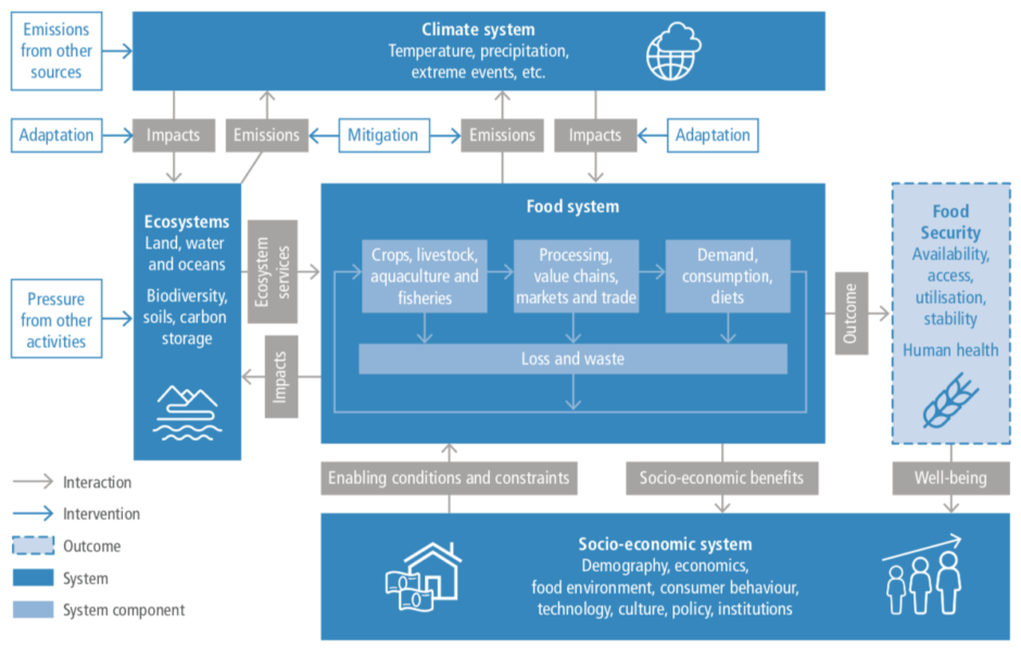 Systems representation from the 2019 IPCC report on Climate Change and Land
